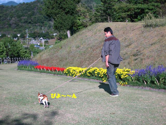 f:id:yasukazu01:20101012214327j:image