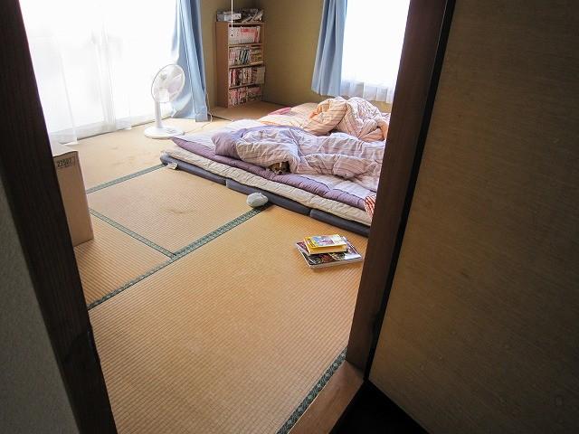 f:id:yasukazu01:20101015214154j:image