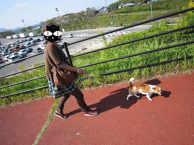 f:id:yasukazu01:20101019202925j:image