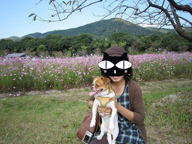 f:id:yasukazu01:20101020221039j:image