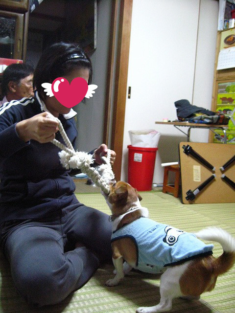 f:id:yasukazu01:20101021225900j:image