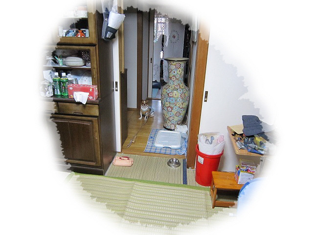 f:id:yasukazu01:20101022231518j:image