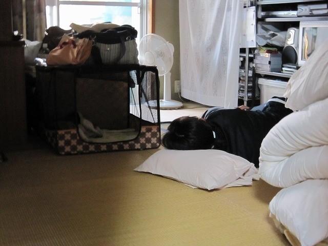 f:id:yasukazu01:20101027215456j:image