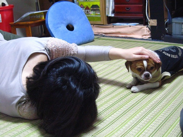 f:id:yasukazu01:20101027220736j:image