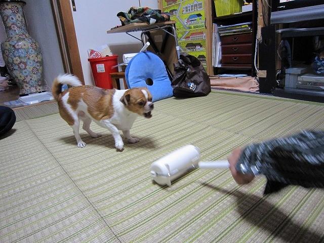 f:id:yasukazu01:20101028222026j:image