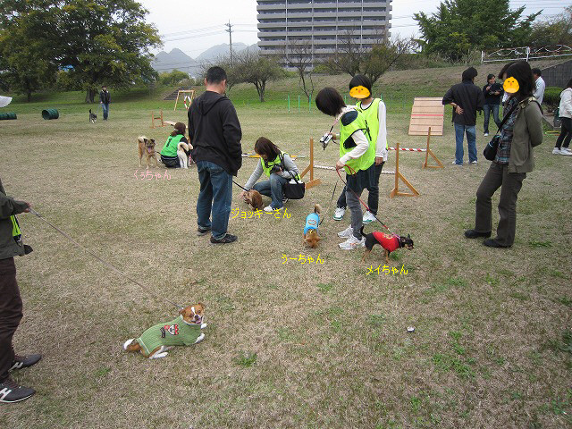 f:id:yasukazu01:20101113211634j:image