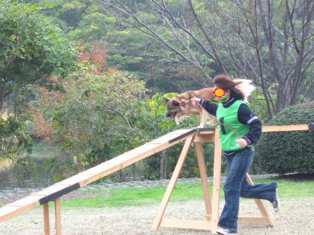 f:id:yasukazu01:20101115202209j:image