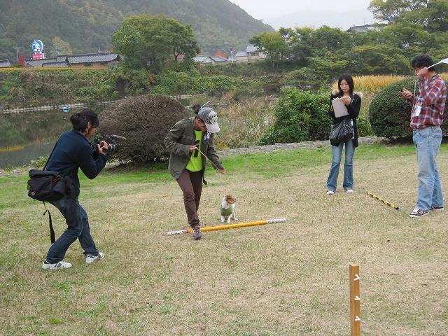 f:id:yasukazu01:20101115202851j:image