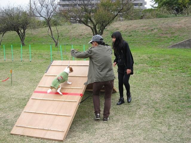 f:id:yasukazu01:20101115203059j:image