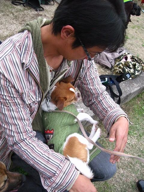 f:id:yasukazu01:20101116203538j:image