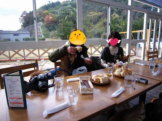 f:id:yasukazu01:20101129221141j:image