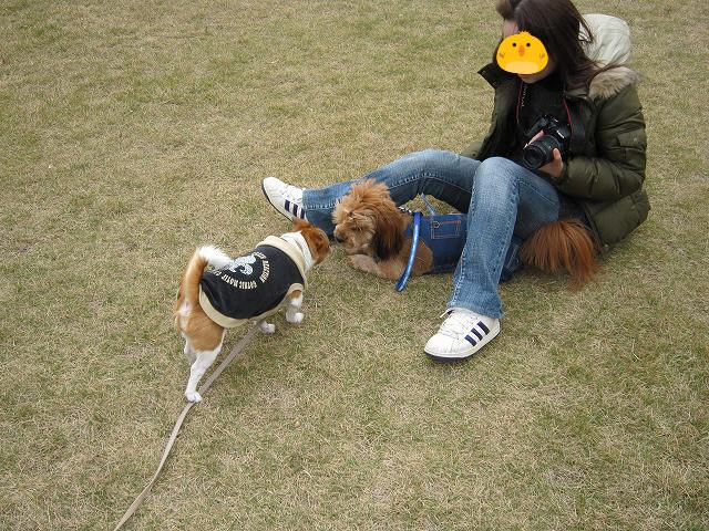 f:id:yasukazu01:20101201222957j:image