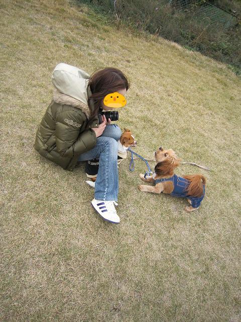 f:id:yasukazu01:20101201223253j:image
