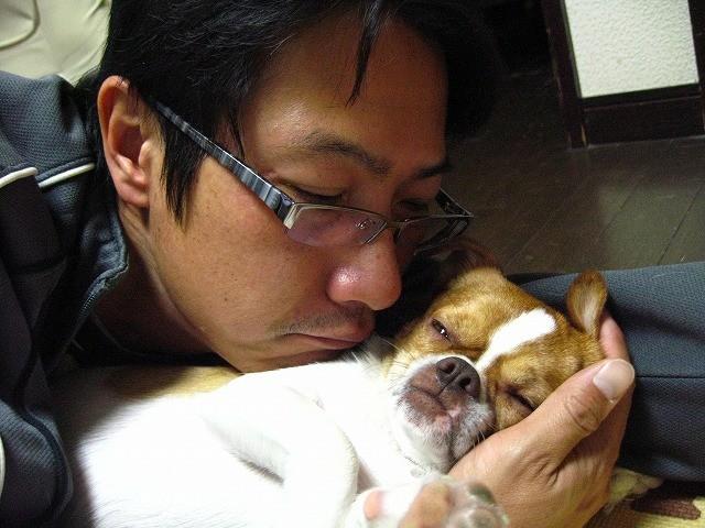 f:id:yasukazu01:20101205214556j:image