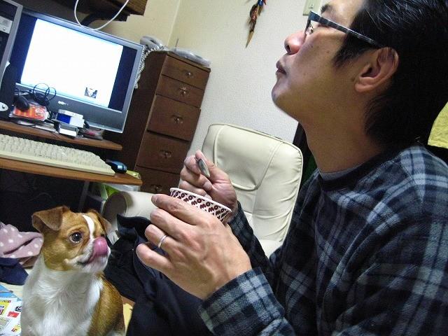 f:id:yasukazu01:20101208210657j:image
