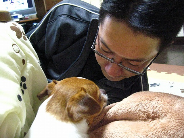f:id:yasukazu01:20101229225153j:image