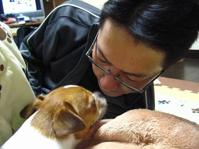 f:id:yasukazu01:20101229225400j:image