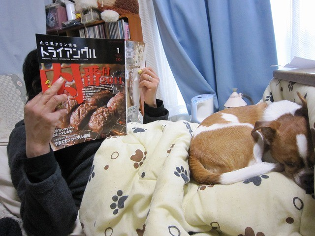 f:id:yasukazu01:20101230224410j:image