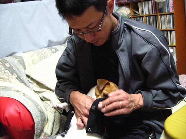 f:id:yasukazu01:20110101220620j:image