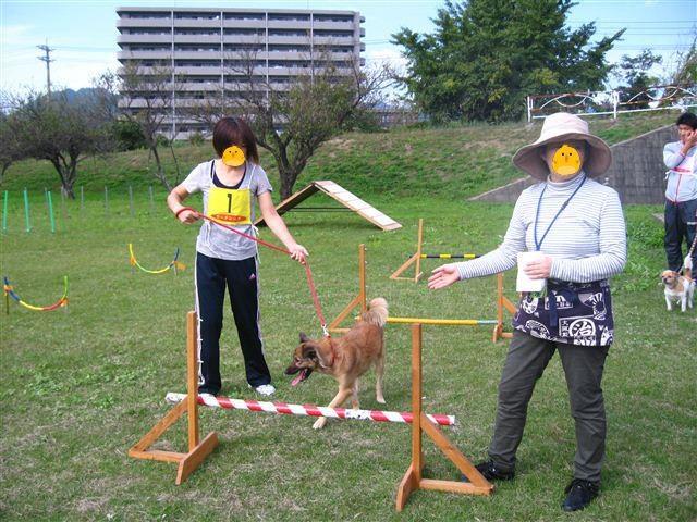 f:id:yasukazu01:20110101221907j:image