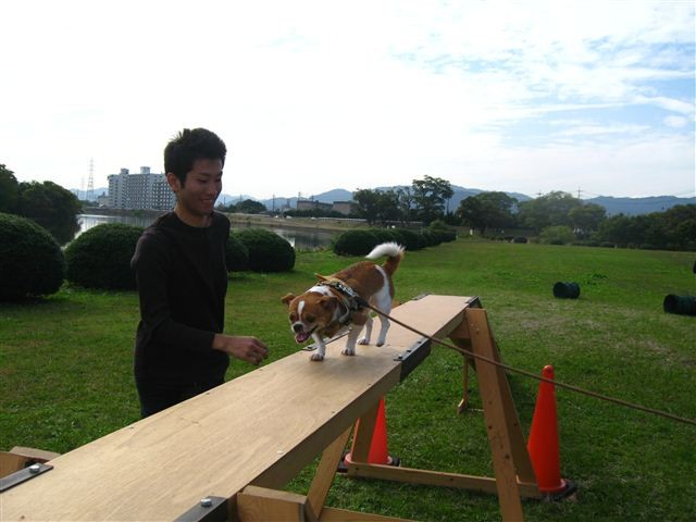 f:id:yasukazu01:20110101225454j:image