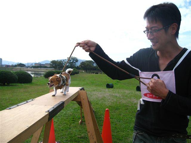 f:id:yasukazu01:20110101233022j:image