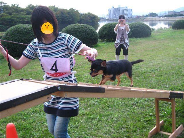f:id:yasukazu01:20110101233202j:image