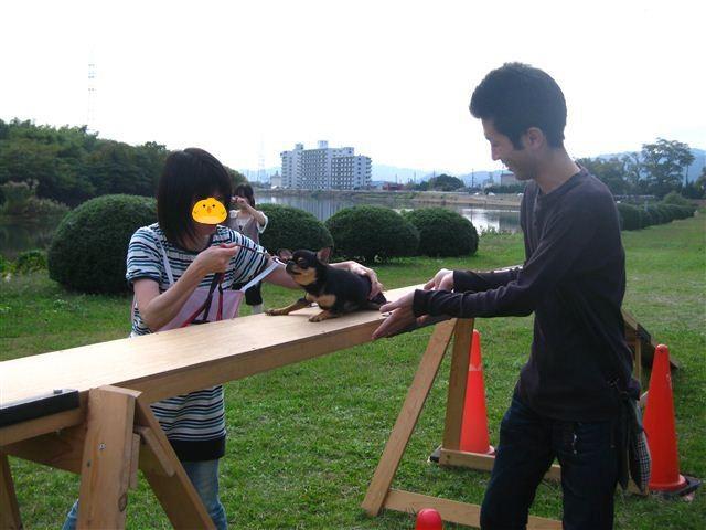 f:id:yasukazu01:20110101233209j:image