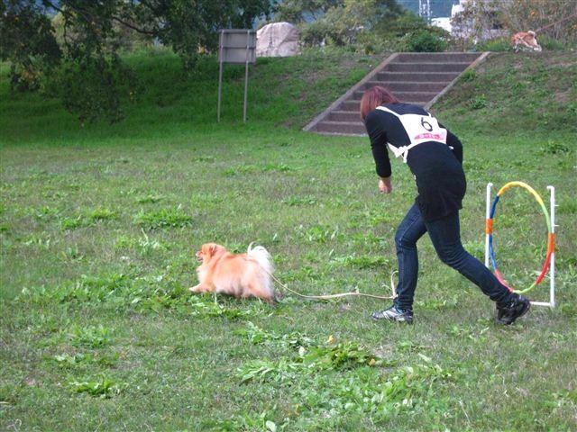 f:id:yasukazu01:20110101233640j:image