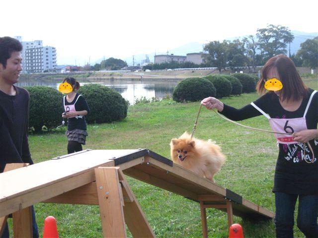 f:id:yasukazu01:20110101233701j:image