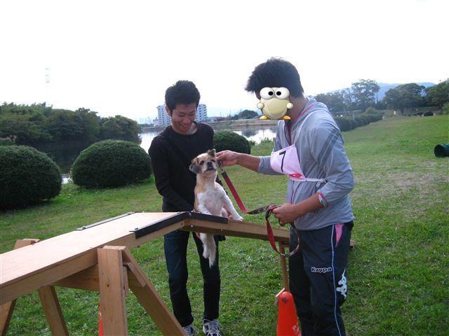 f:id:yasukazu01:20110101233853j:image