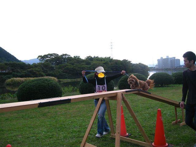 f:id:yasukazu01:20110101234402j:image