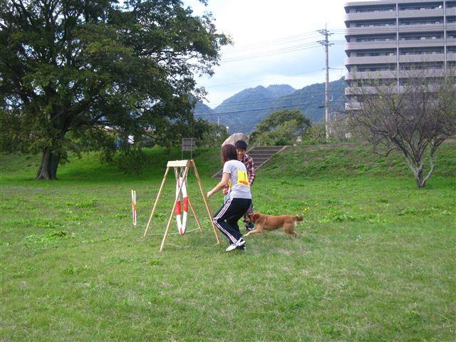 f:id:yasukazu01:20110101235358j:image