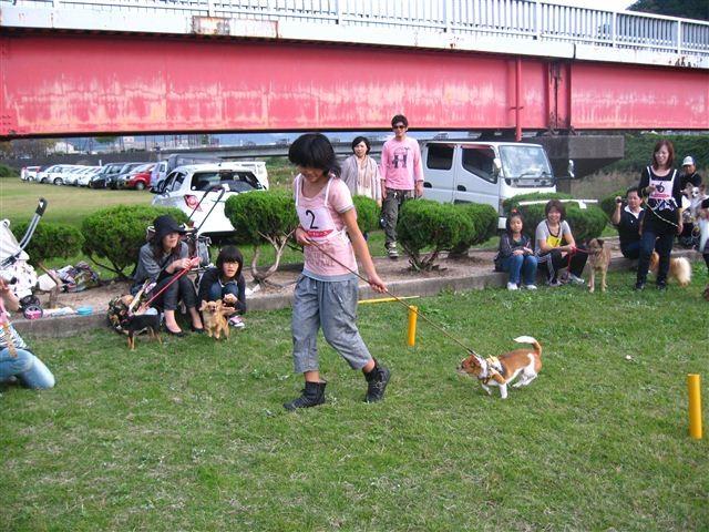 f:id:yasukazu01:20110102000538j:image