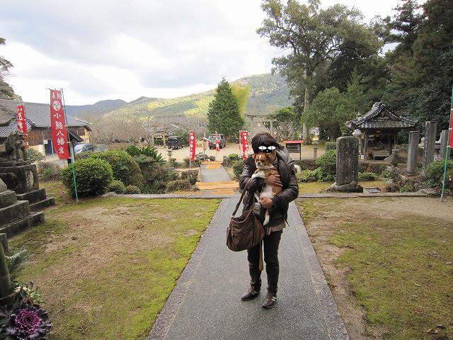 f:id:yasukazu01:20110104230621j:image