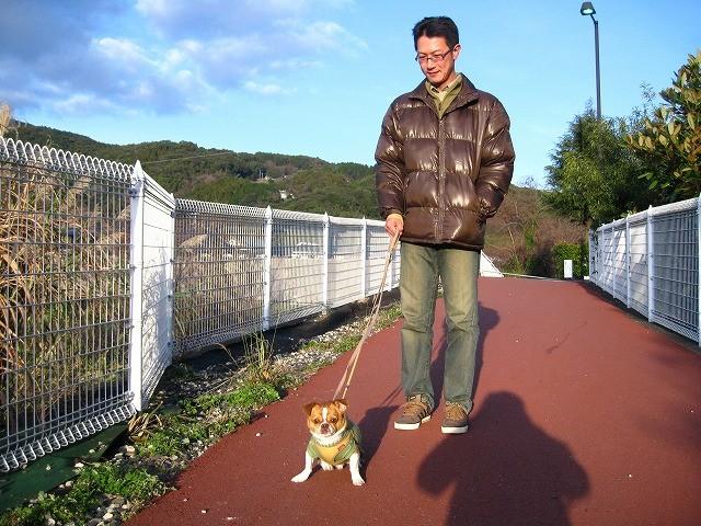 f:id:yasukazu01:20110111223843j:image