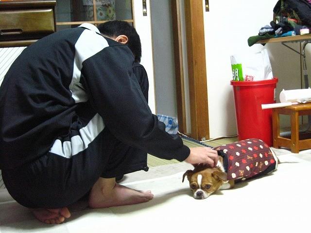 f:id:yasukazu01:20110112212113j:image