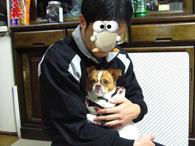 f:id:yasukazu01:20110112212114j:image