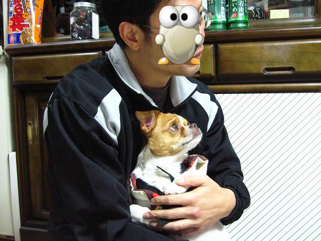 f:id:yasukazu01:20110112212115j:image