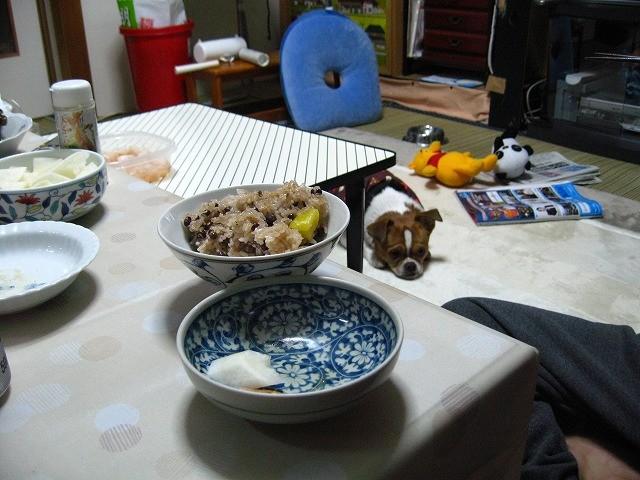 f:id:yasukazu01:20110112212117j:image