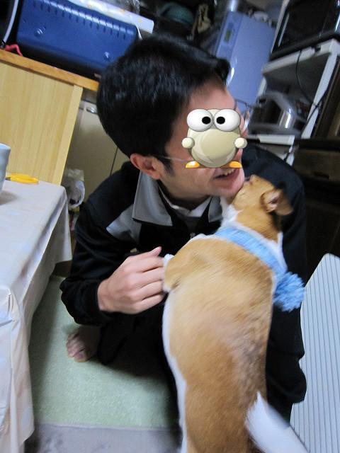 f:id:yasukazu01:20110114212733j:image