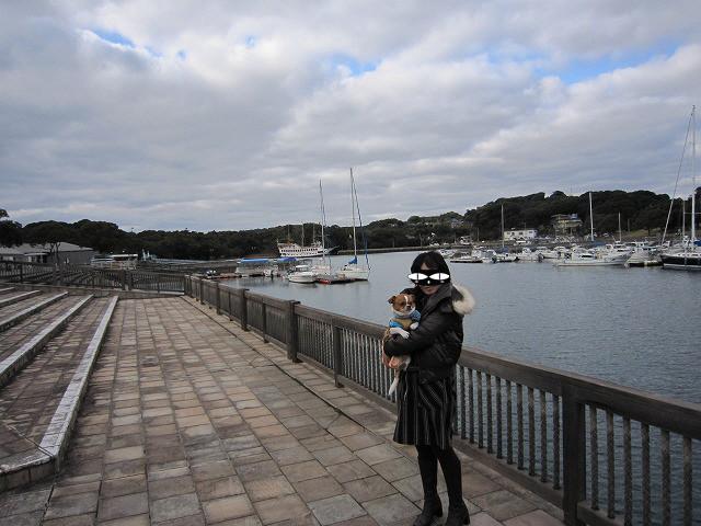 f:id:yasukazu01:20110114215121j:image