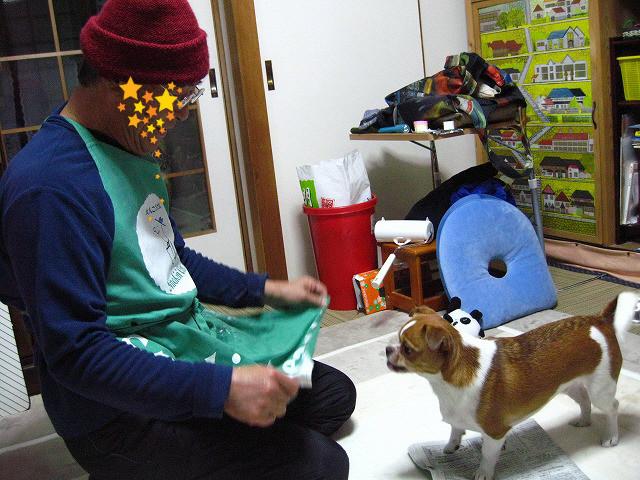 f:id:yasukazu01:20110115221558j:image