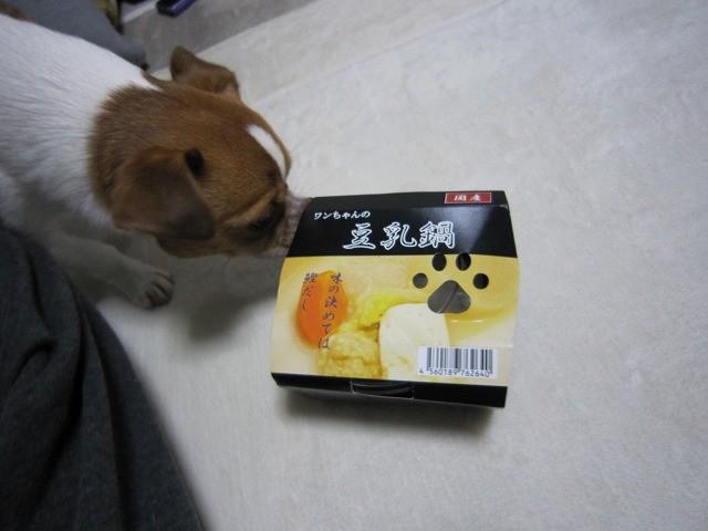 f:id:yasukazu01:20110116210505j:image