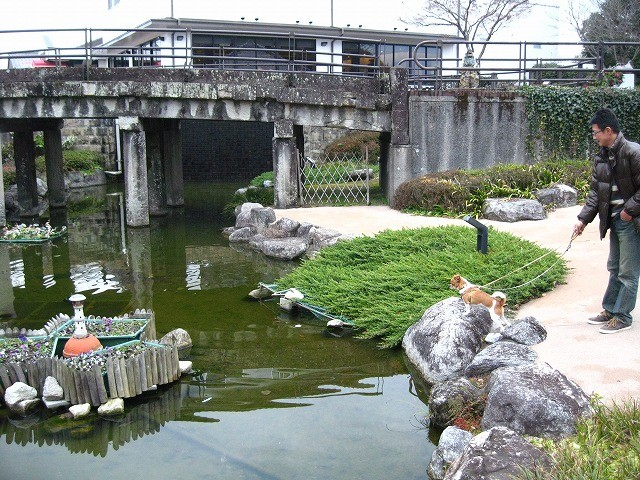 f:id:yasukazu01:20110117222811j:image