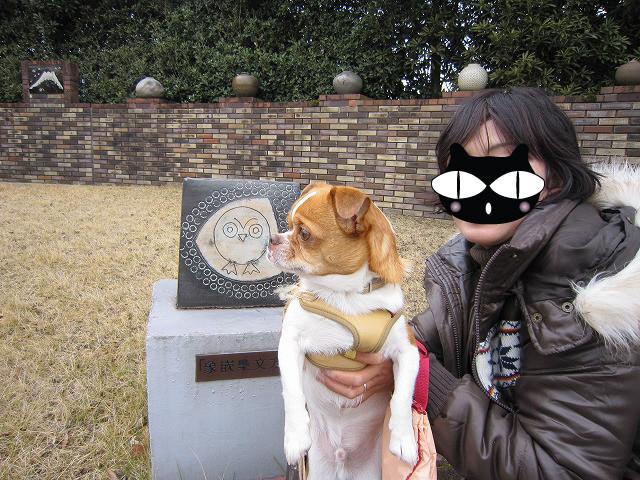 f:id:yasukazu01:20110117225353j:image