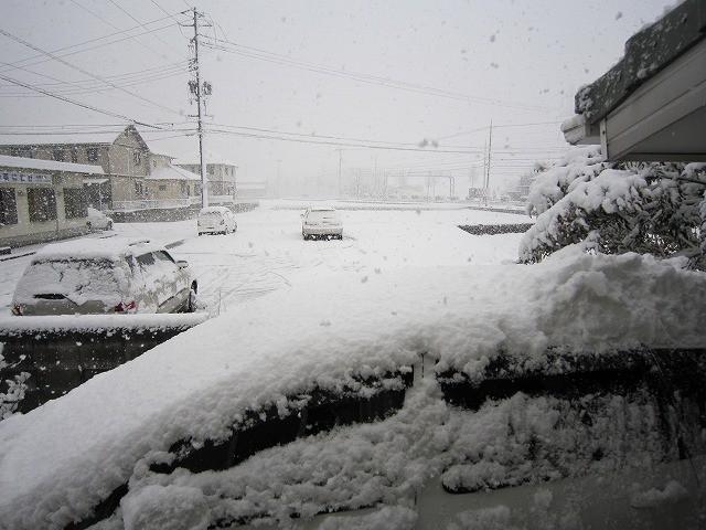 f:id:yasukazu01:20110212215626j:image