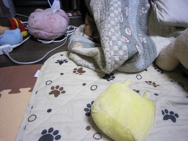 f:id:yasukazu01:20110217220059j:image