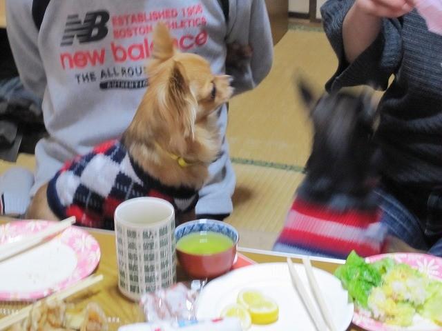 f:id:yasukazu01:20110221220323j:image