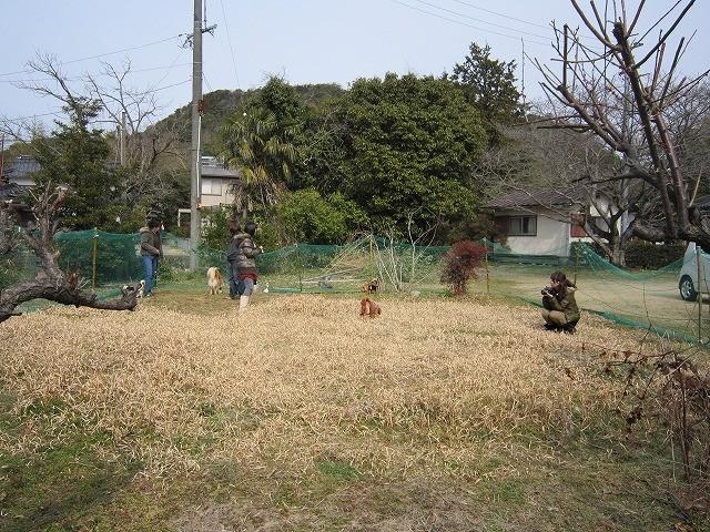 f:id:yasukazu01:20110222214247j:image